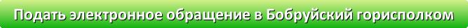 Бобруйский горисполком