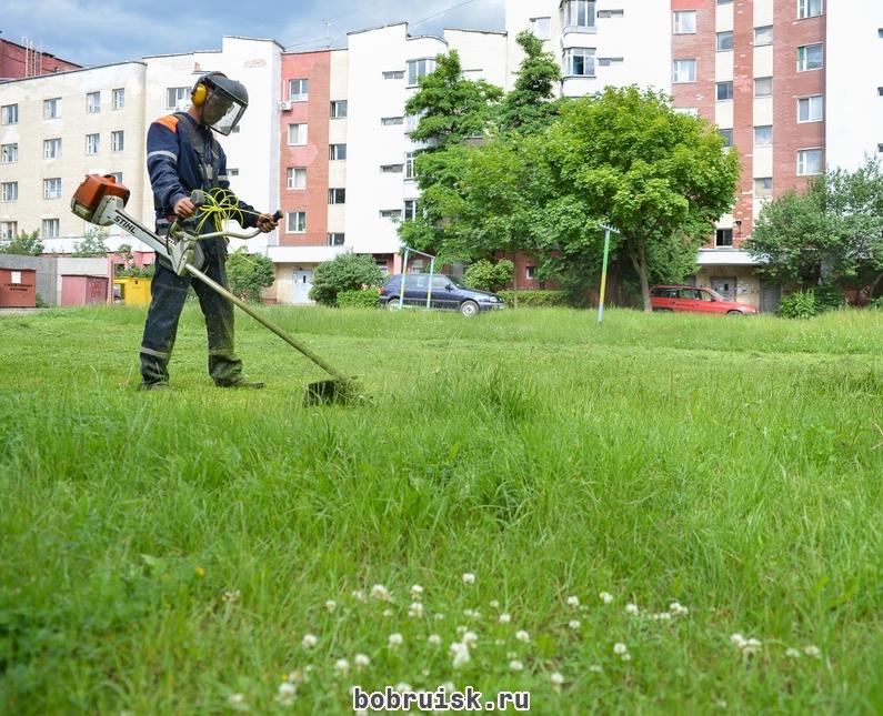 скоса травы