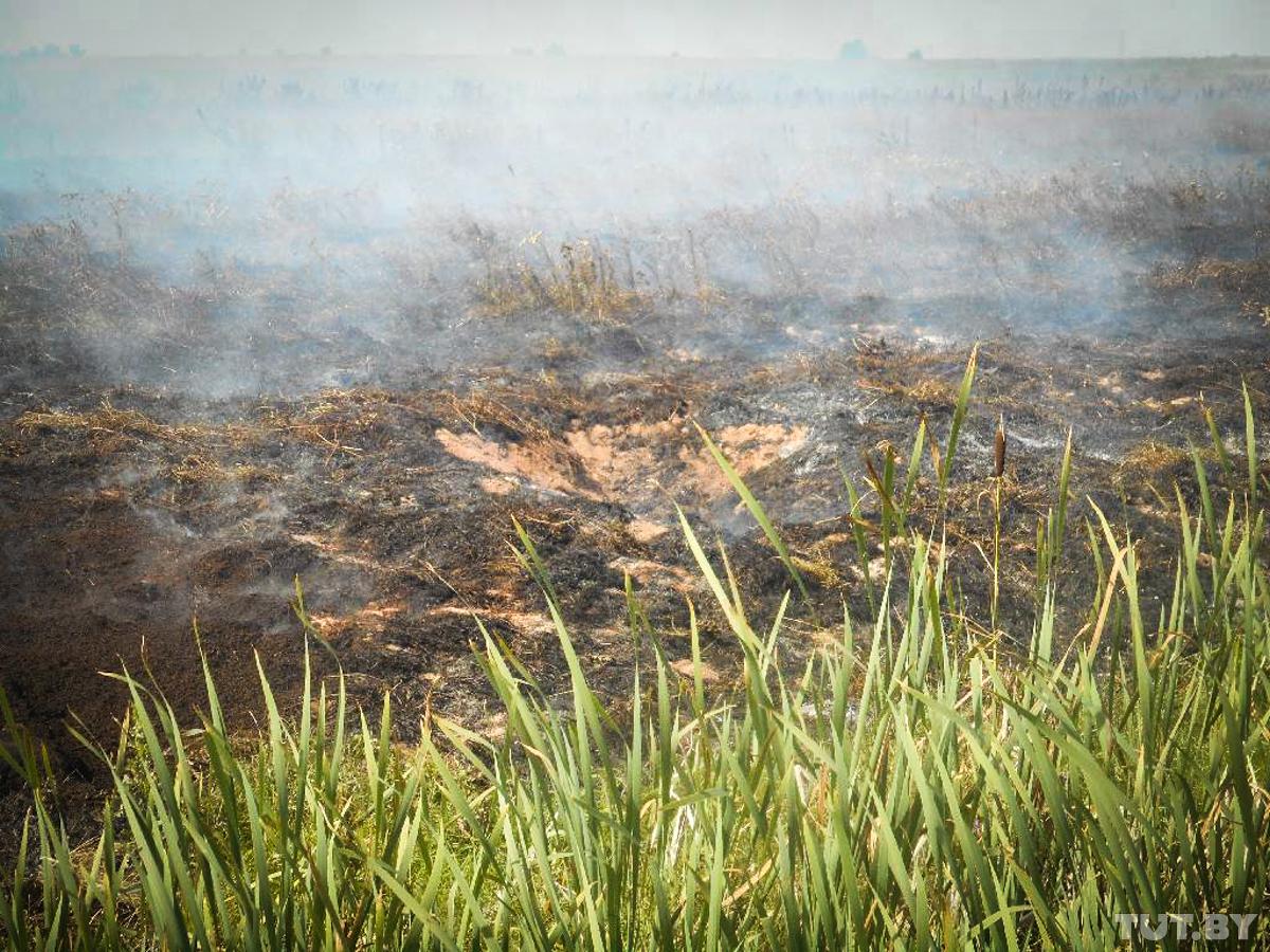 Пожары в Бобруйске