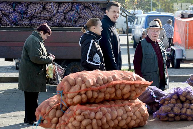 ярмарка картофеля