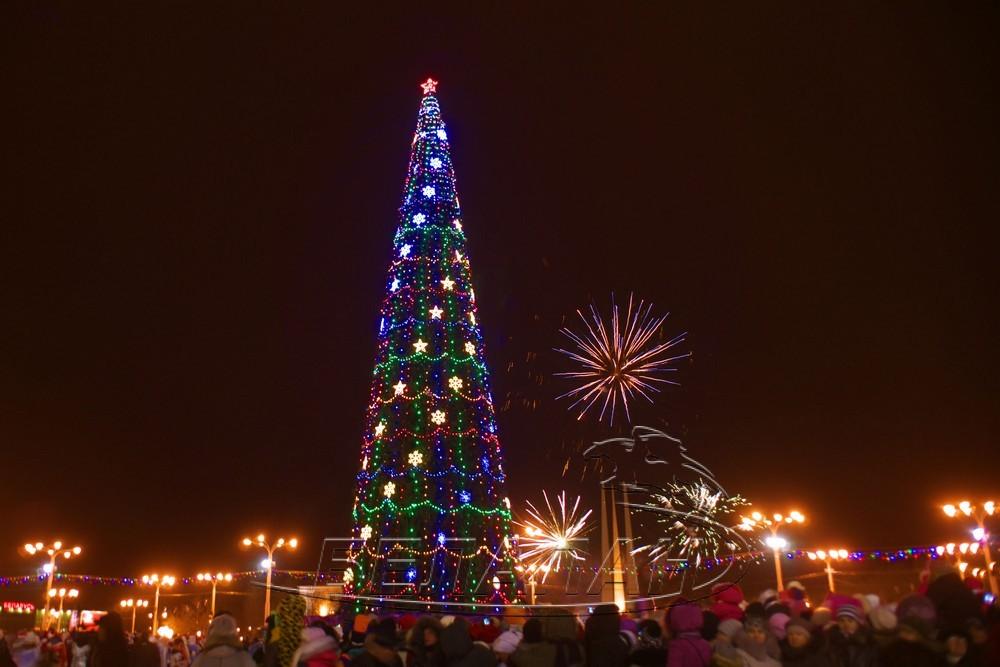 Главная бобруйская елка на этот раз засияет особенно ярко