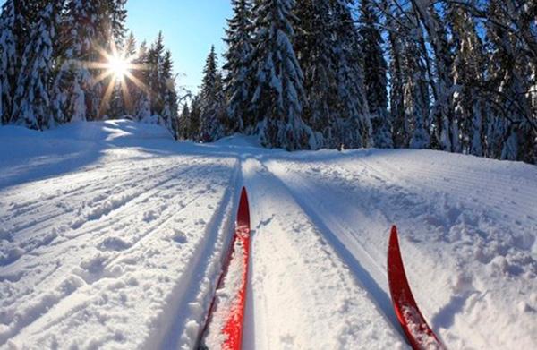 «Бобруйскую лыжню» отменили из-за погоды