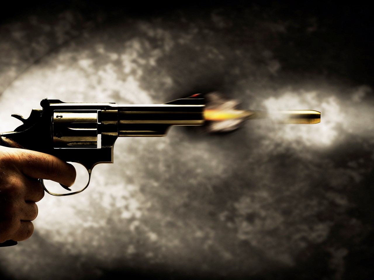 Бобруйское УВД подсчитало владельцев оружия