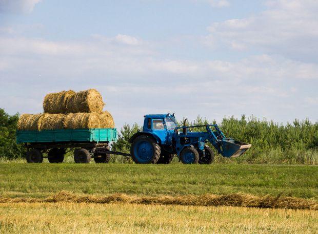 Бобруйск окажет помощь связанную с заготовкой сена и кормов