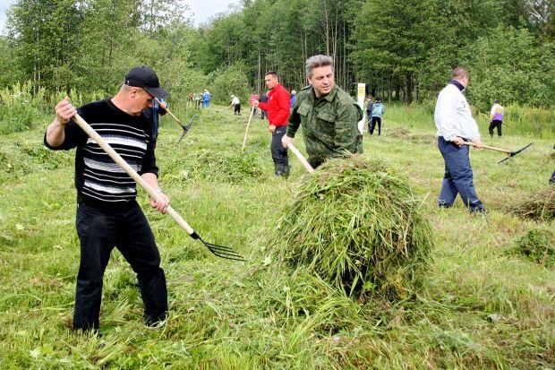 Представители городской власти приняли участие в уборке лугового участка