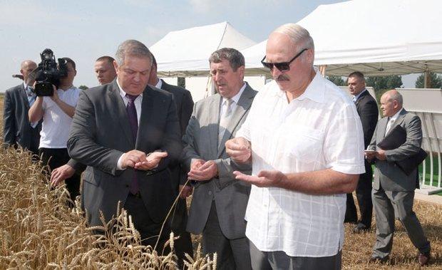 Лукашенко обещает поддержку фермерам