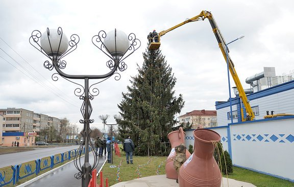 В Бобруйске поставили первую в городе новогоднюю ель