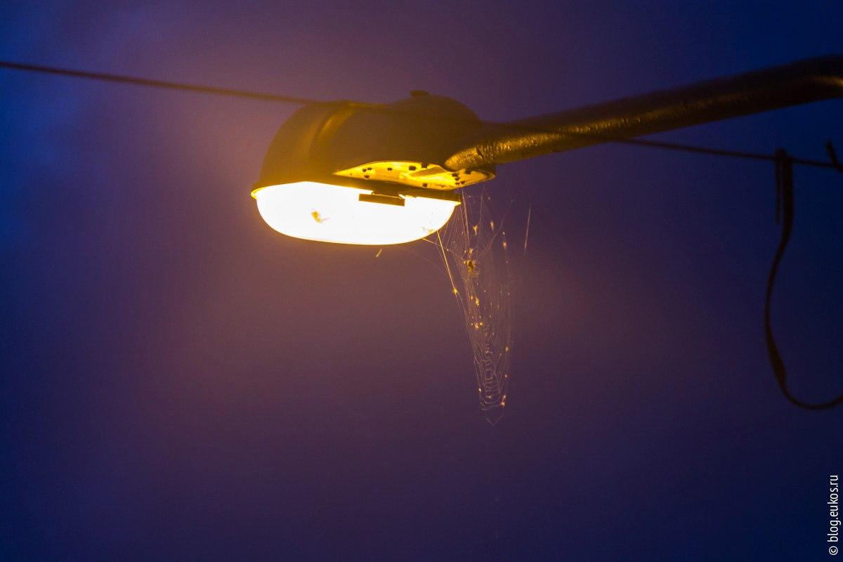 В Бобруйске всё также актуальна проблема освещения улиц