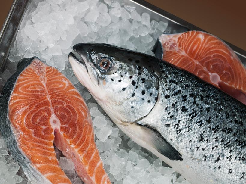 купить охлажденную рыбу