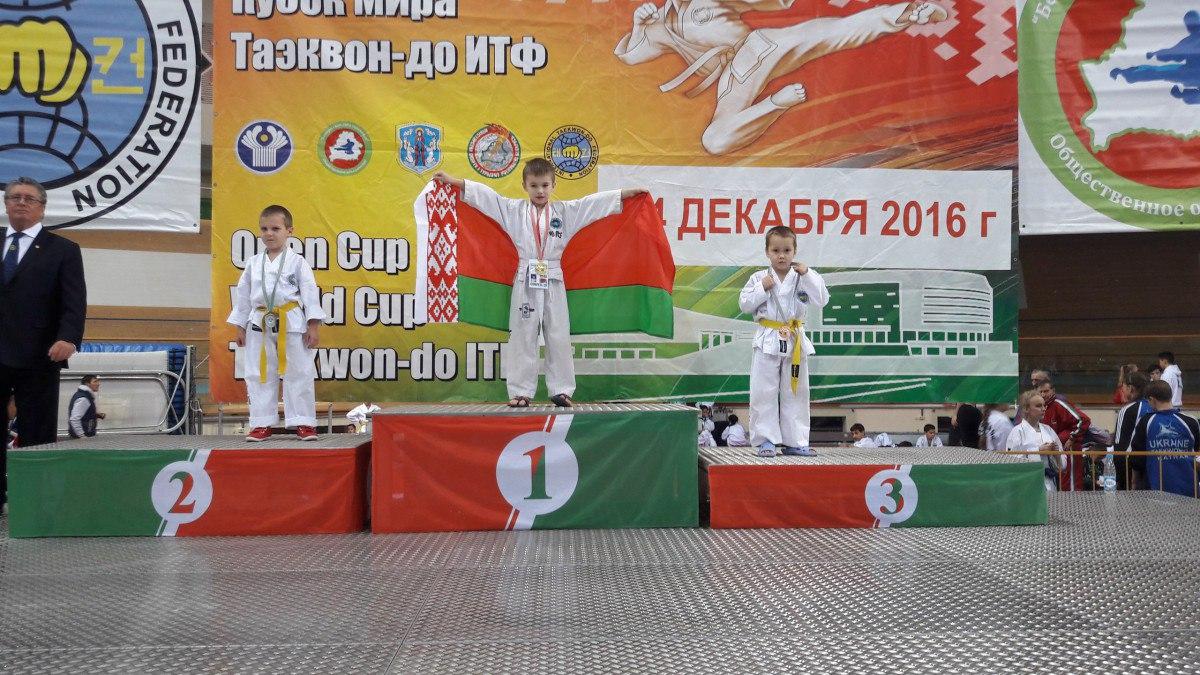 17 медалей новых медалей в спортивной копилке Бобруйска