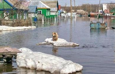 Бобруйчанам следует подготовиться к возможным весенним паводкам