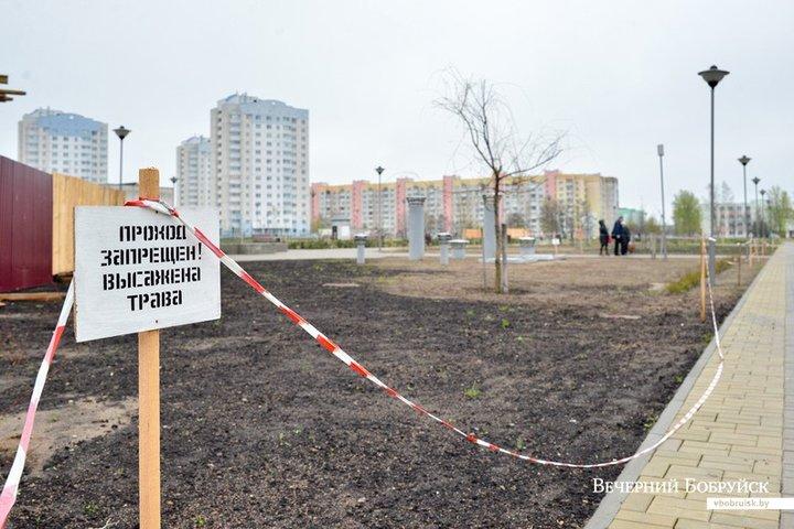 Ко Дню города в молодежном парке Бобруйска появится Wi-Fi
