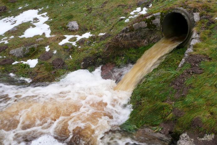 Бобруйчанам следует внимательнее относиться к окружающей природной среде