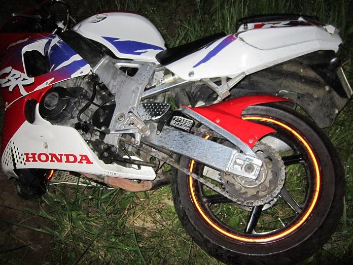 В Могилевском районе мотоцикл сбил лося — водитель и пассажирка погибли. Ищут свидетелей ДТП