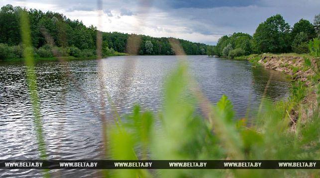 Житель Мостовского района обокрал три машины рыбаков на берегу Немана