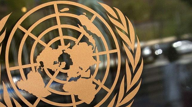 Новым постоянным координатором ООН в Беларуси стала Иоанна Казана-Вишневецкий