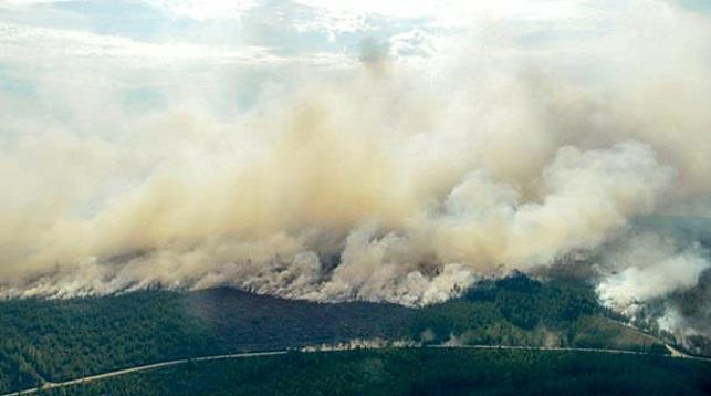 В Швеции будут тушить не все лесные пожары