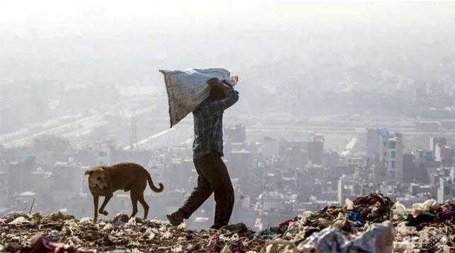 Крупнейшая мусорная свалка в Индии в 2020 году станет выше Тадж-Махала