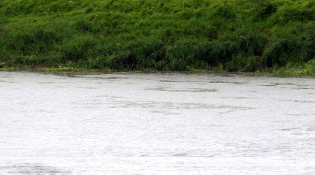 Житель Малоритского района учил жену плавать и утонул