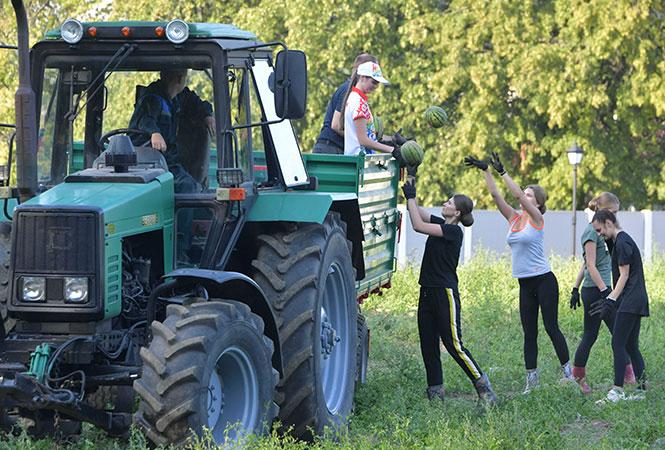 Молодые девушки собрали урожай арбузов с подворья Лукашенко