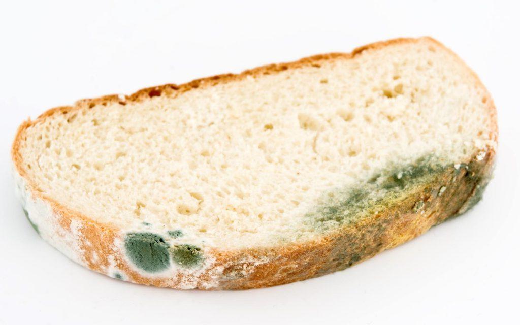 Что происходит с организмом, когда мы случайно съедаем продукты с плесенью