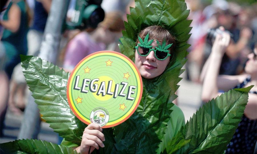 легализовали марихуану