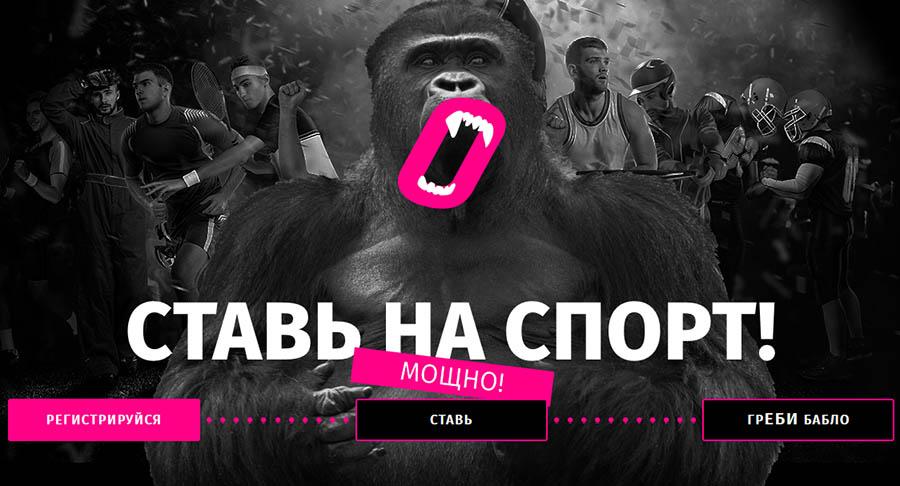 букмекерская контора горила