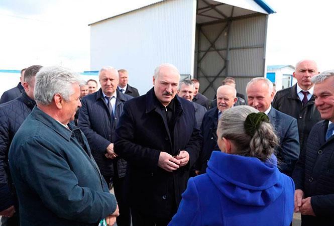 Лукашенко в Витебской области: Что касается болезней, то деревня — это спасение