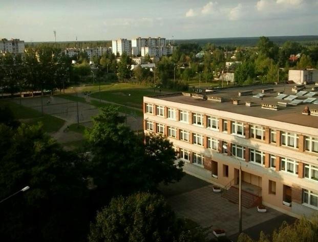 В бобруйской школе № 31 кто-то распылил газ из баллончика — всех детей пришлось эвакуировать